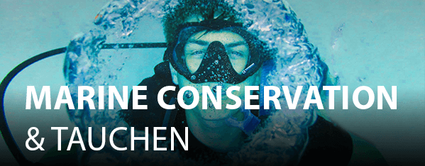 marine conservation and tauchen