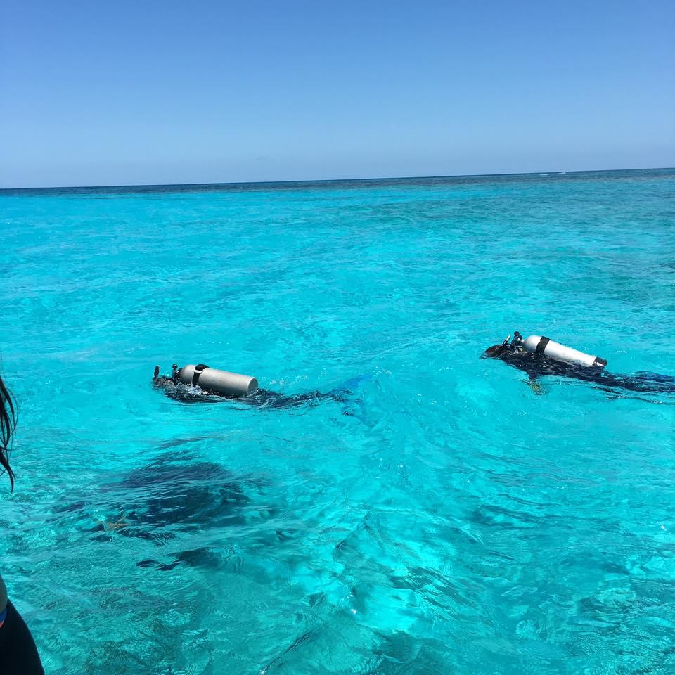 PADI diving in the bahamas