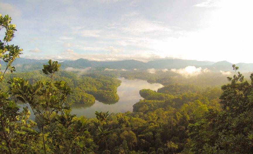 Trekking Through the Jungle on a Gap Year