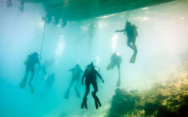 Marine Expedition Dive Instructor Course - Gap Year Program