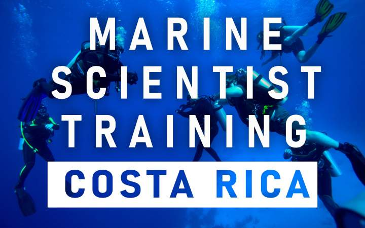 Marine Scientist Training - Costa Rica - Gap Year Program