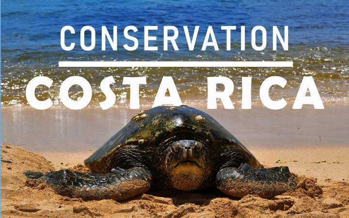 Conservation Costa Rica - Gap Year Program